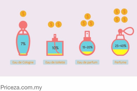 Best Infographic best infographics showing concentration : perfume Infographics | The Feminine Princess